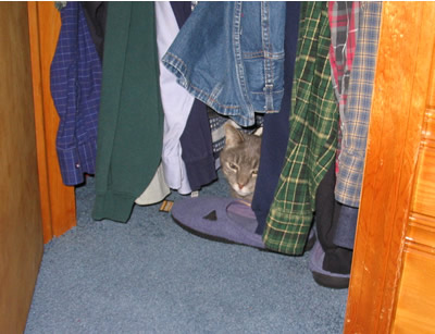 Clyde in David's Closet