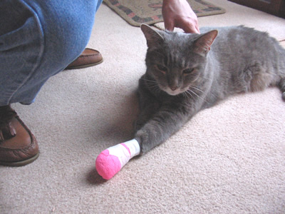 Looking good in a hot pink bandage.