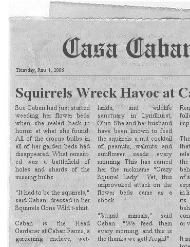 Casa Caban News
